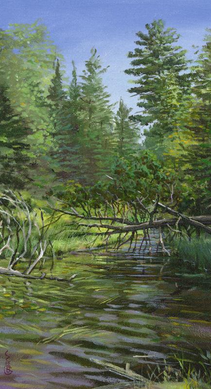 Lake-Huron-Brant-Gebhart-Hidden-Portage-074